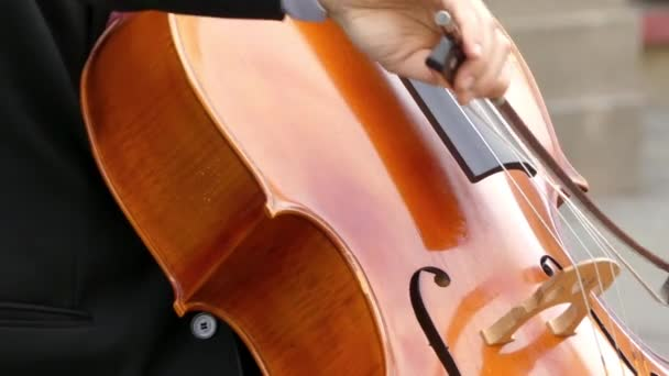 Musician In Costume Plays Cello Close Up Cello Or Violoncello Is Bowed And Sometimes Plucked String Instrument With Four Strings Tuned In Perfect Fifths
