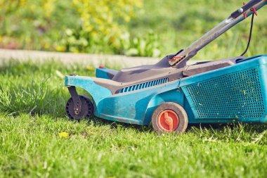 Lawn mower cutting green grass in backyard