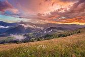krásné letní krajina v horách. východ slunce