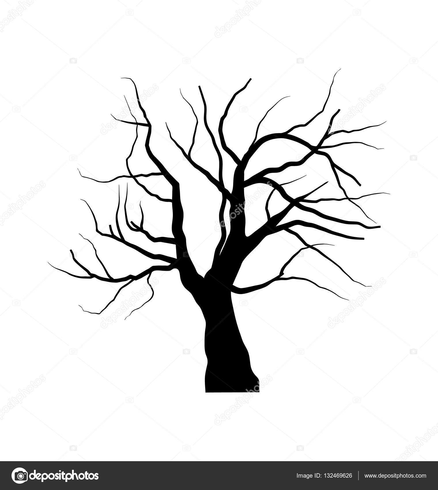 Dibujo De árbol Seco Sin Hojas Aislado Sobre Fondo Blanco Fotos