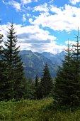 krásný pohled na hory z turistické trasy