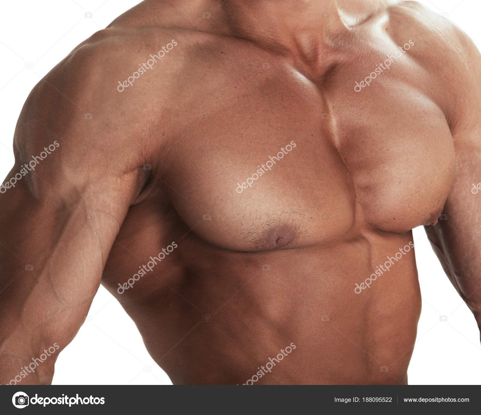 Muscular Torso Of Bodybuilder Stock Photo Depositnovic 188095522