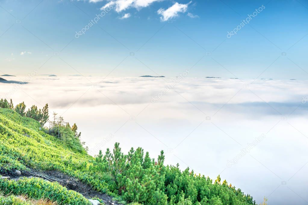 Фотообои Green mountains in clouds