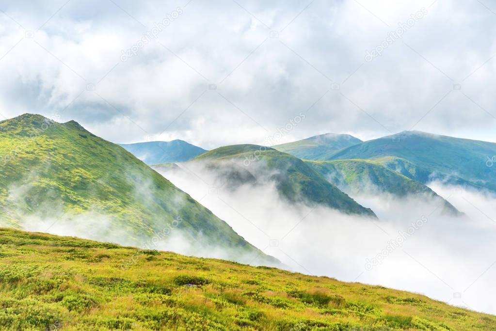 Фотообои Green mountains in clouds