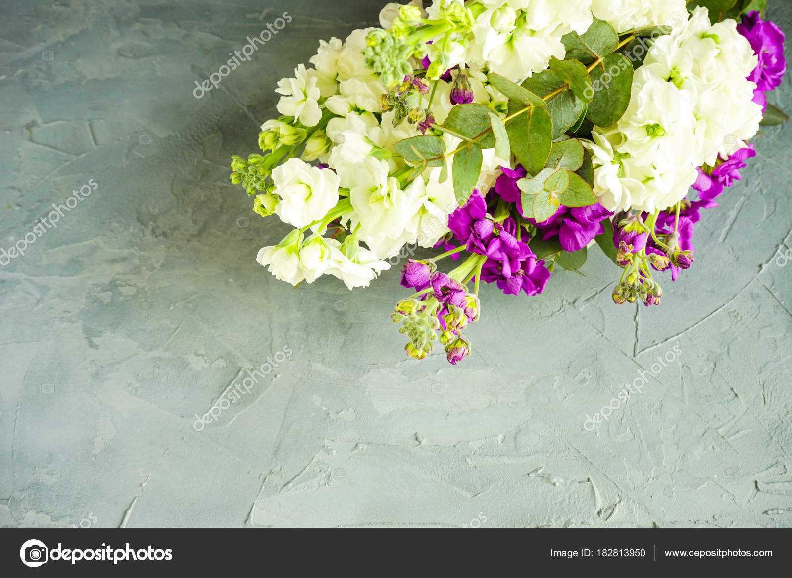 Beautiful Snapdragon Flowers In A Bouquet Stock Photo Elet1