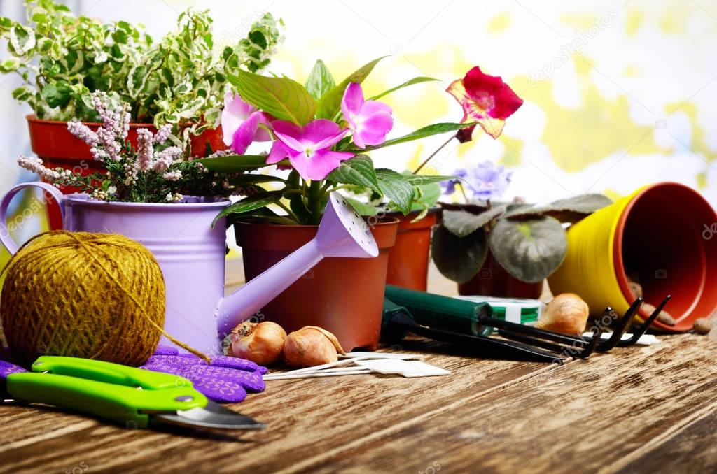 tools for planting flowers