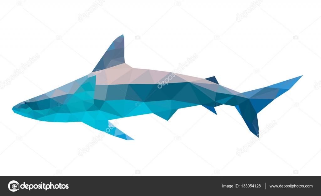 Shark Art Design