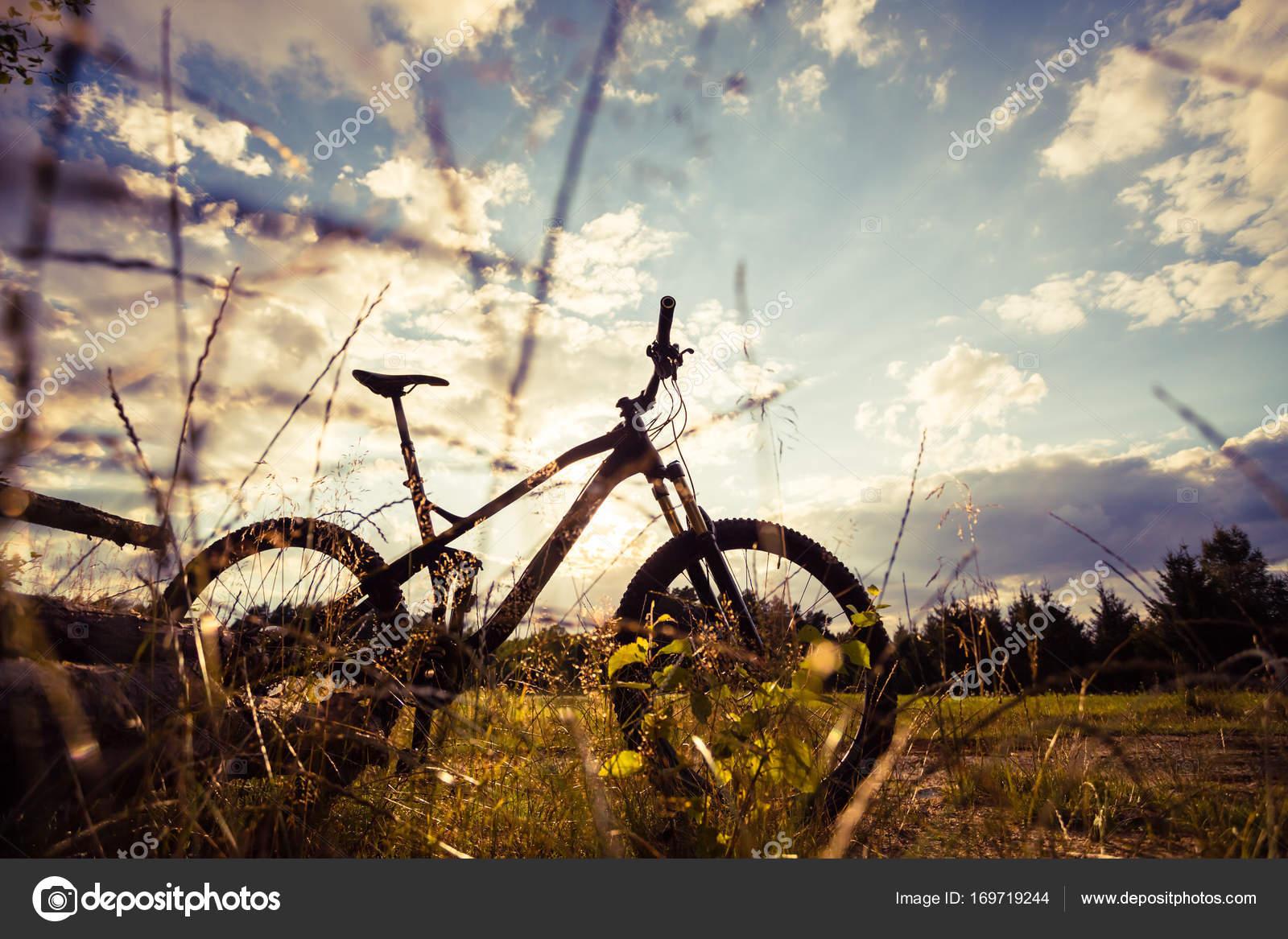 Mountainbike mtb auf gr nen sommer waldweg inspirierende la stockfoto blasbike 169719244 - Inspirierende bilder ...