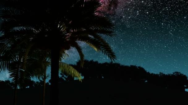 Palmy a hvězdy Mléčné dráhy v noci. Prvky tohoto obrázku jsou podle Nasa