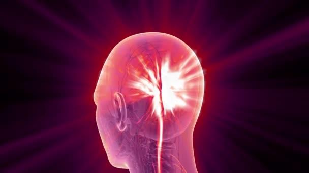 Věda skenování anatomie lidského mozku, zářící