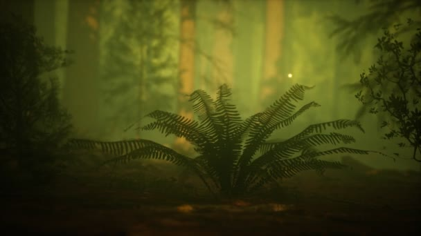 firefly in misty forest with fog