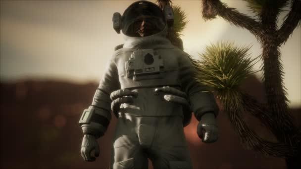 Astronauth ve vysoké poušti v Nevadě