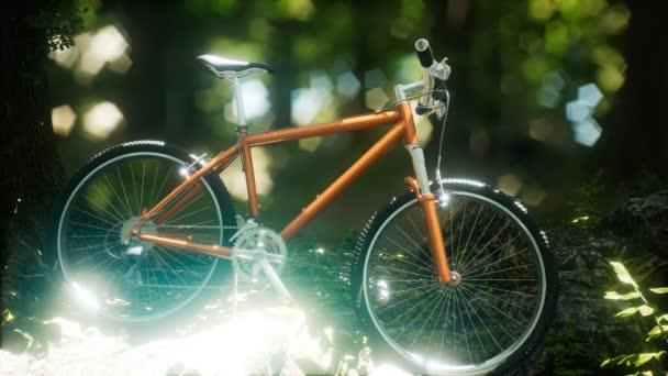 Horské kolo na lesní cestě