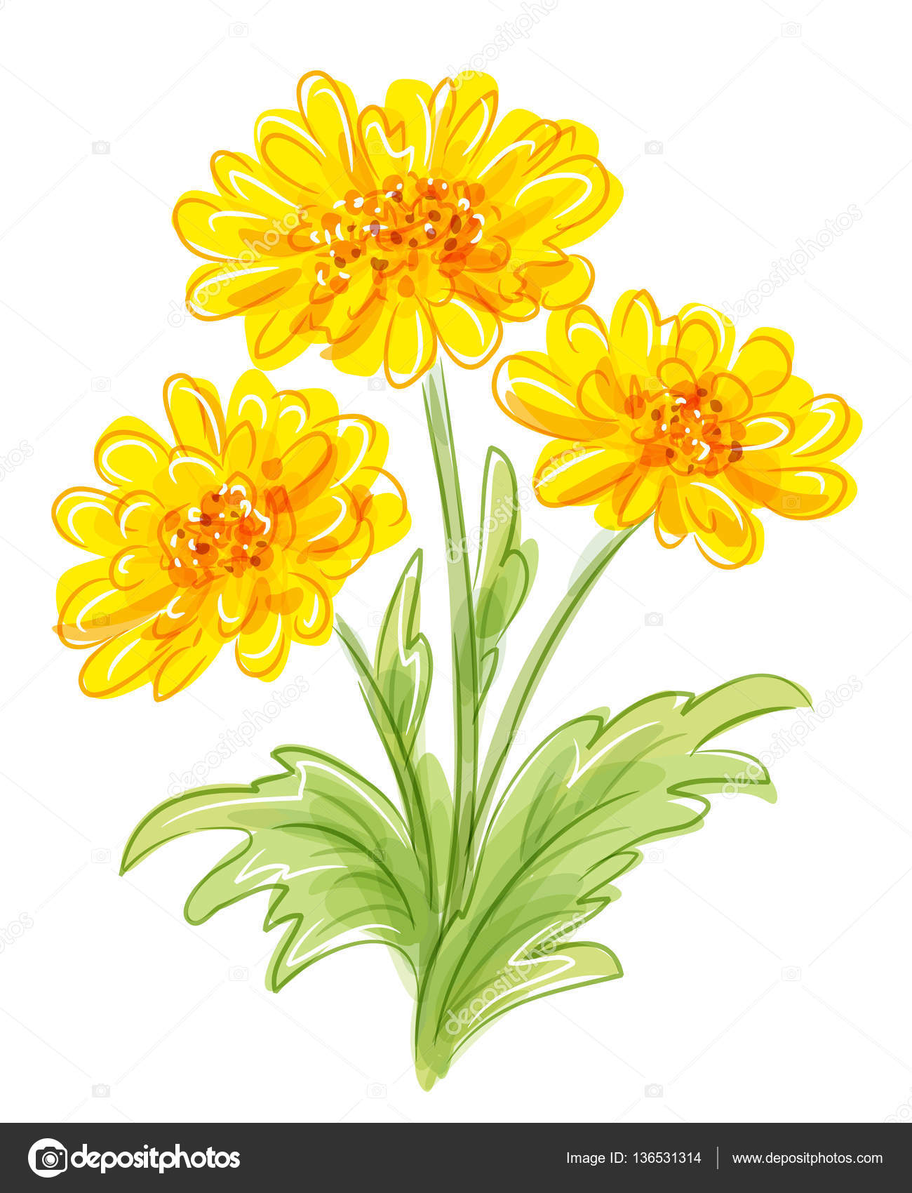 Three Yellow Flowers Eps10 Vector Stock Vector Rosinka 136531314