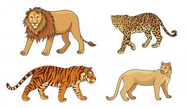 Set of vector big cats