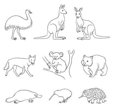 Set of vector Australian animals in contours