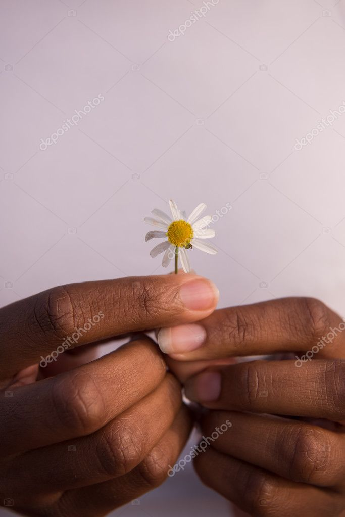 African American girl with a flower in her hand