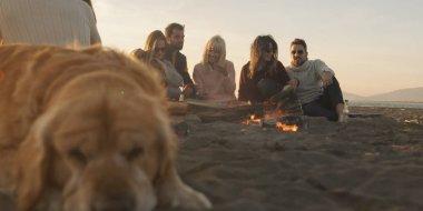Gün batımında kumsalda köpeği olan bir grup arkadaş şenlik ateşi etrafında dinleniyor.