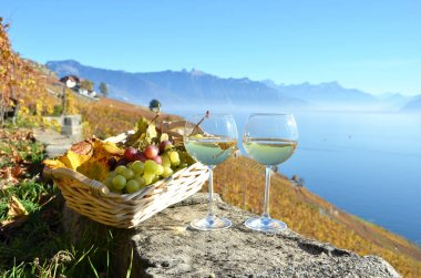 Wine and grapes against Geneva lake