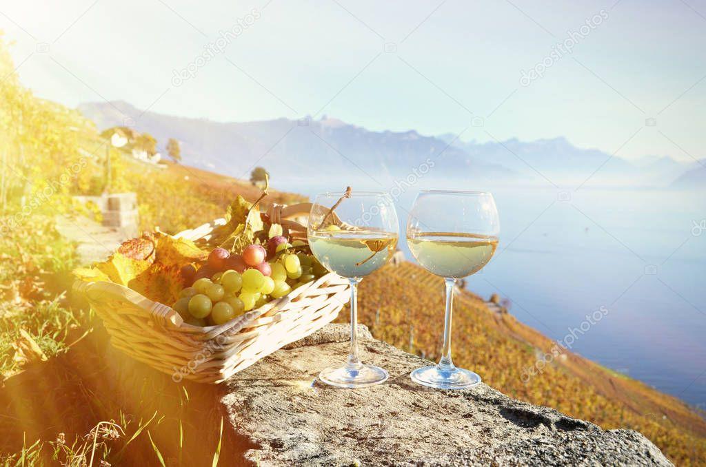 Wine and grapes against Geneva lake