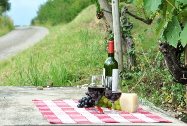 Red wine and grapes served at picnic