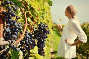 Girl tasting white wine among vineyards.