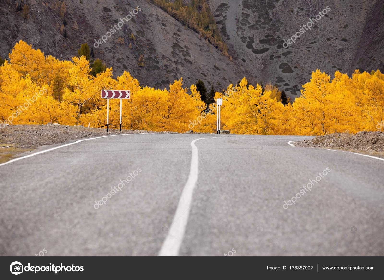 autumn mountain road track background autumn trees stock photo