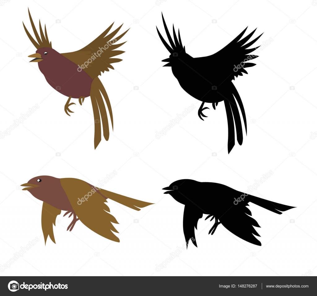 pássaros imagem de contorno vetores de stock irzikot 148276287