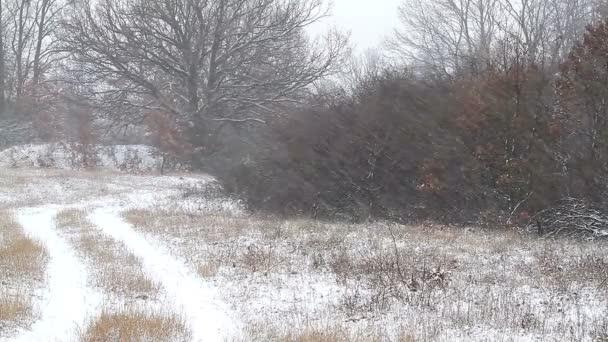 Silné sněžení v zimě