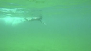 Young Spanish girl swimming freestyle style in the transparent water in Costa Brava in Spain