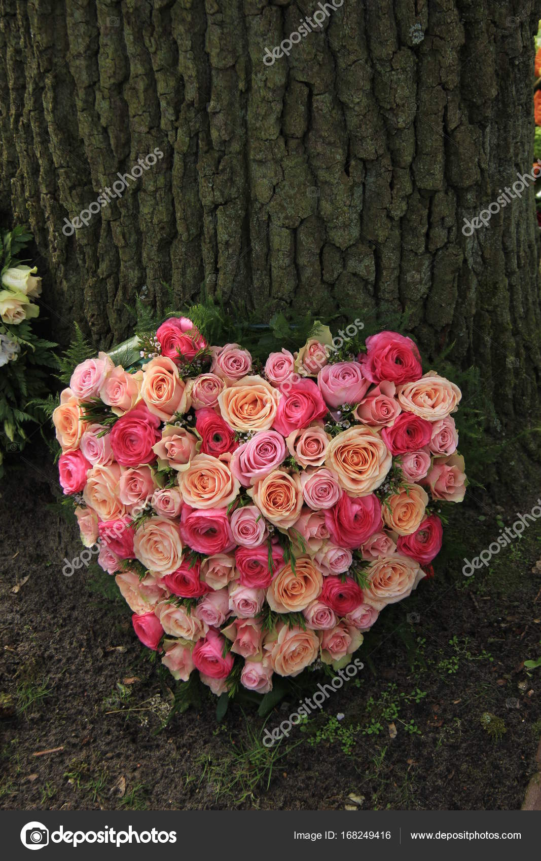 Sympathy Flowers Near A Tree Stock Photo Portosabbia 168249416