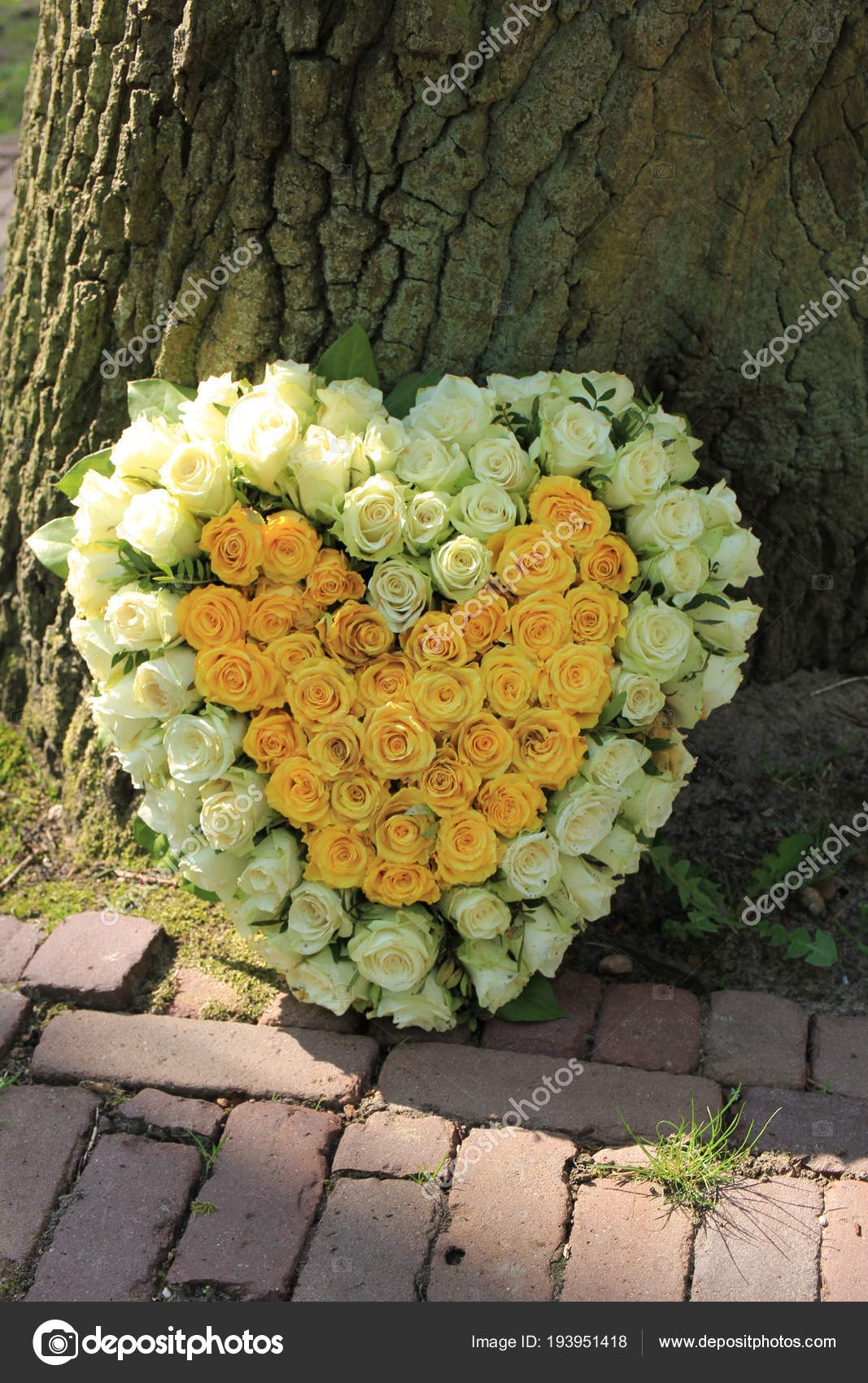 Sympathy flowers near a tree stock photo portosabbia 193951418 heart shaped sympathy flowers or funeral flowers near a tree white and yellow roses photo by portosabbia izmirmasajfo