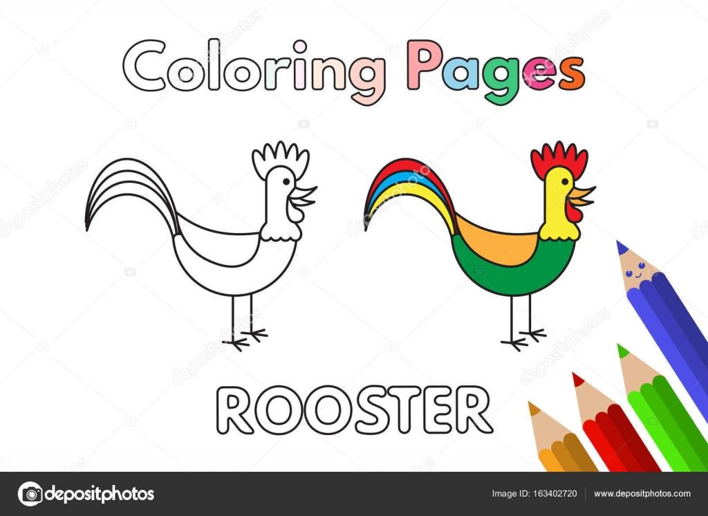 Libro De Colorear Gallo De Dibujos Animados Vector De Stock