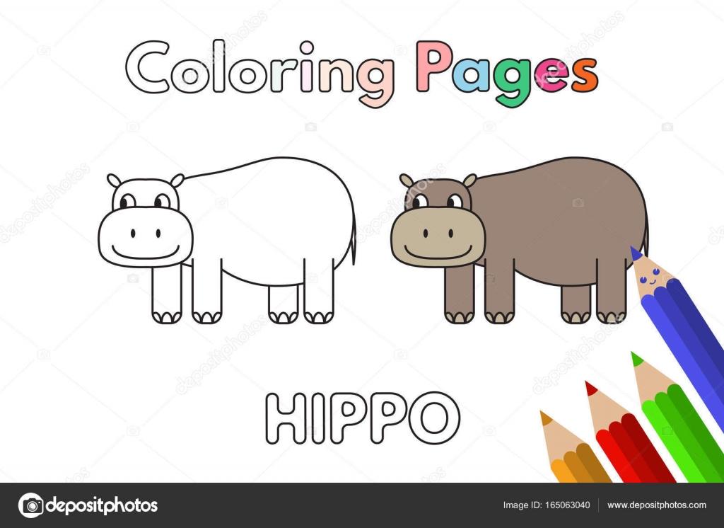 Libro de colorear hipopótamo de la historieta — Vector de stock ...