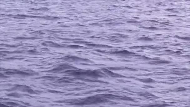 Onde e increspature sulla superficie dellacqua