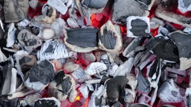 Löschen von Lagerfeuer mit Glut und Asche Nahaufnahme, allmählich zoomen 4k Filmmaterial