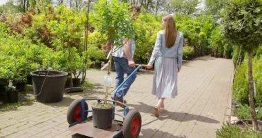 Gardeners pulling tree on wagon