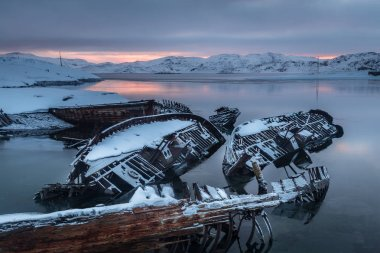 Graveyard of old ships on the shore of the frozen Barents Sea. T
