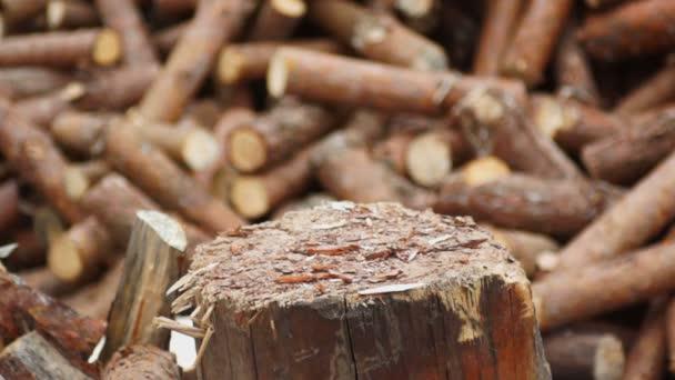 sekání dřeva se sekyrou