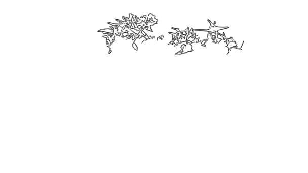 Melampyrum nemorosum vagy Ivan-da-Marya. Glasse virágok. HD-videó