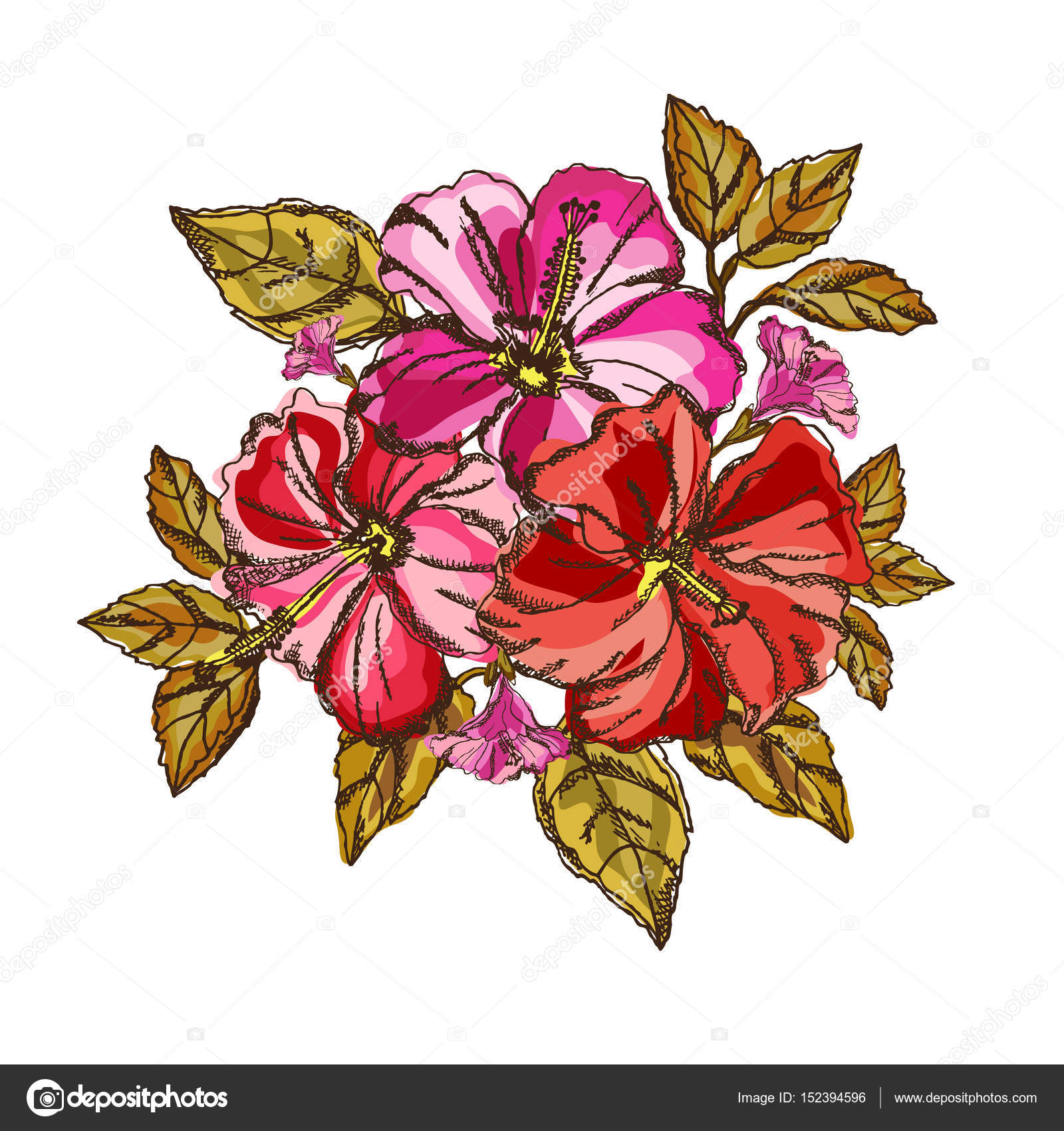 hibiscus floral bouquet — Stock Vector © Chantall #152394596