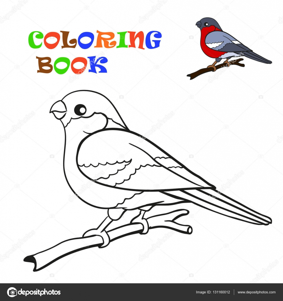 Coloring Book Bird Bullfinch Stock Vector C Bruce29 131160012