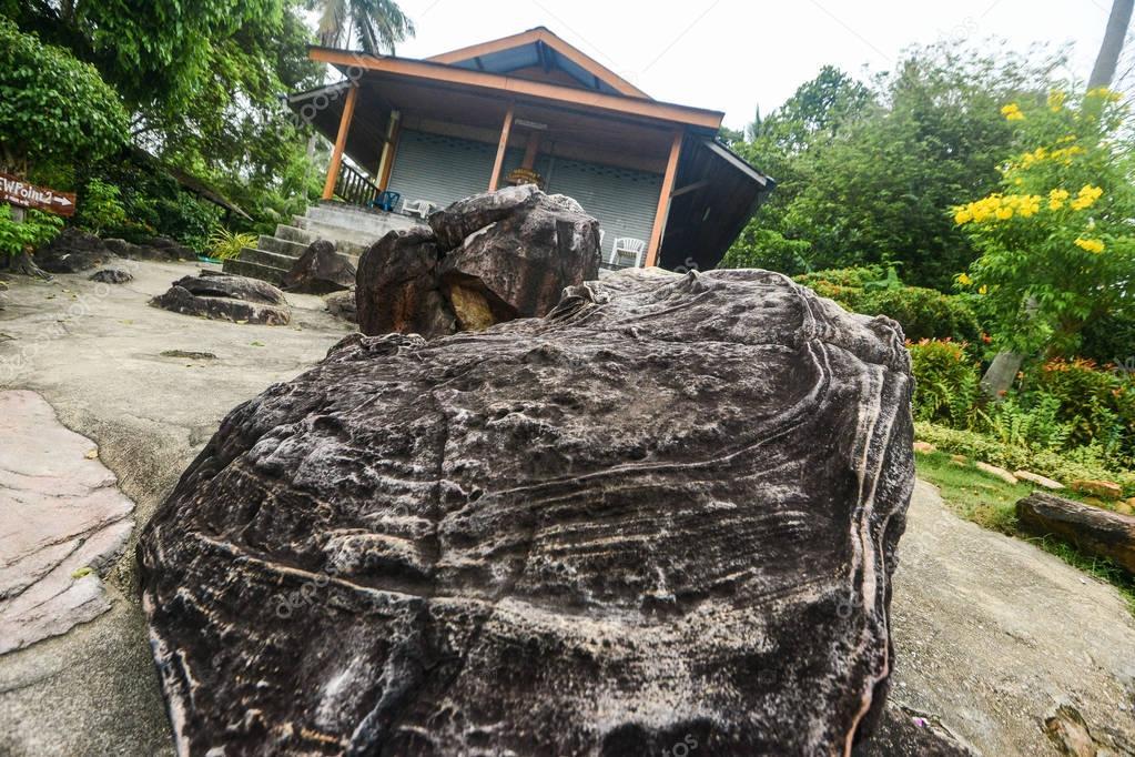 View on tropical Phi Phi island, Krabi Province, Thailand