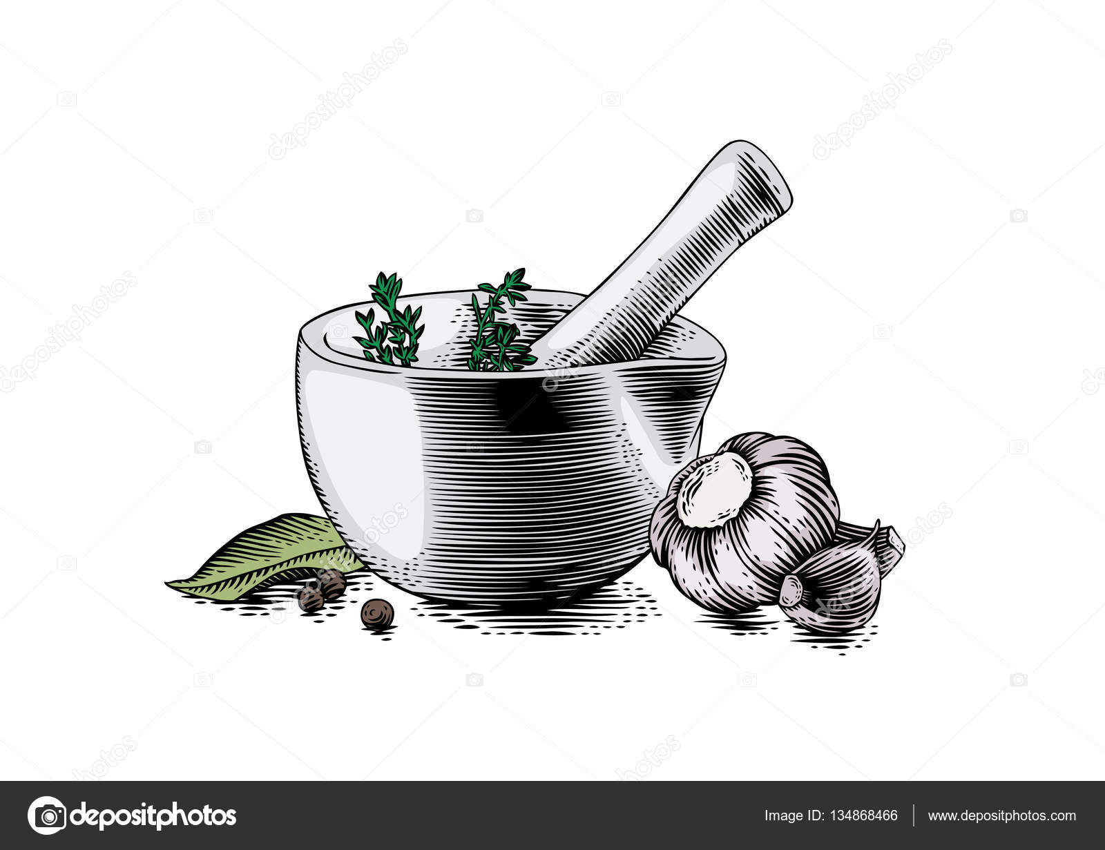 Mortar bowl and pestle with spice, herb and garlic — Stock Vector ... for Mortar And Pestle Drawing  55nar