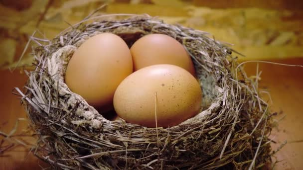 húsvéti tojások a fészekben