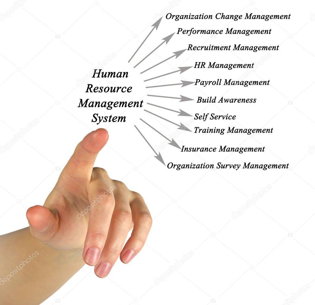 Human Resource Management System — Stock Photo © vaeenma #130029402