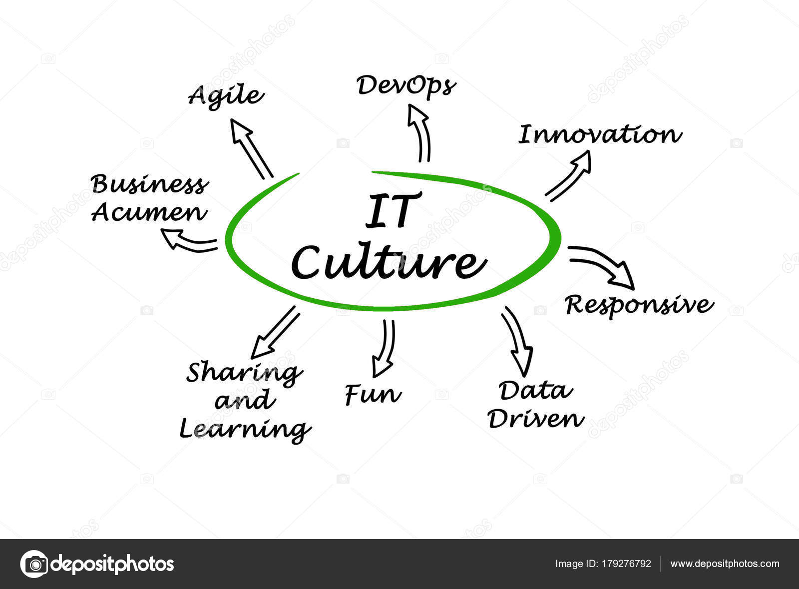 what are the characteristics of culture