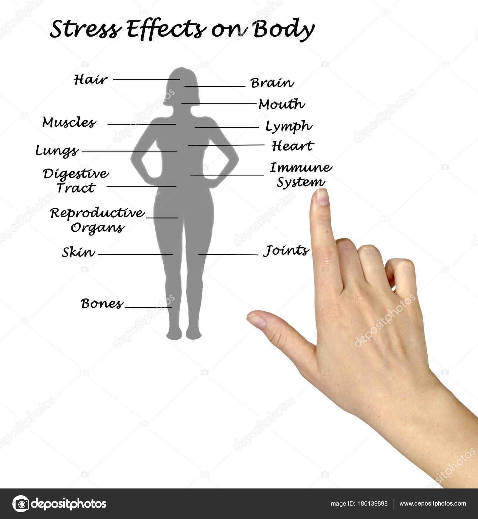 Воздействие стресса на человека