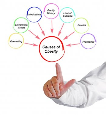 Causesand Effects of Obesity