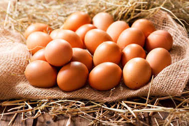 Eggs in a heap of Hay on wooden table stock vector